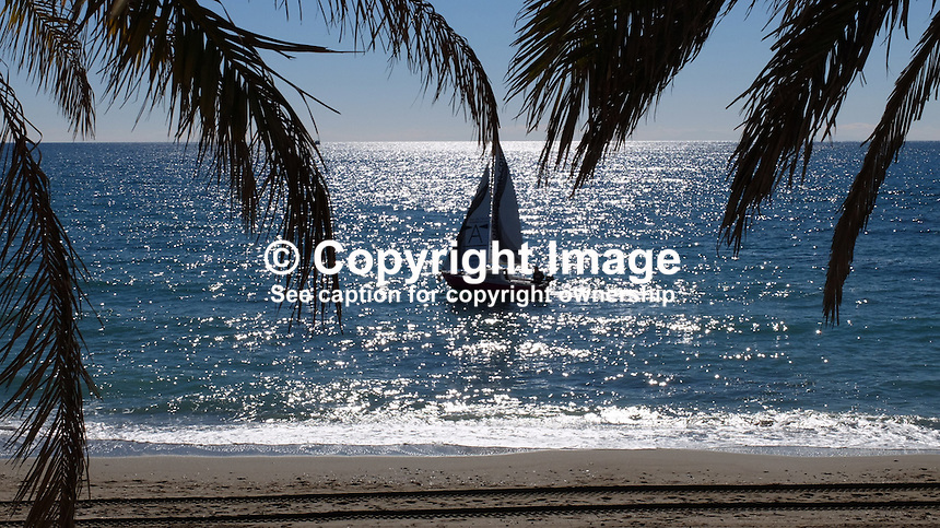Yacht, sailing boat, Mediteranean, palm trees, palms, coastline, Marbella, Malaga Province, Spain, Espana, February, 2015. 201502050368<br />