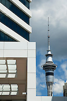 Auckland city skyline and skytower, New Zealand