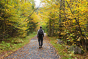 Franconia Notch State Park - Man walking along Franconia Bike Path during the autumn months in the White Mountains, New Hampshire USA