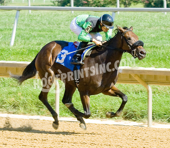 L B's Expression winning at Delaware Park on 9/12/12