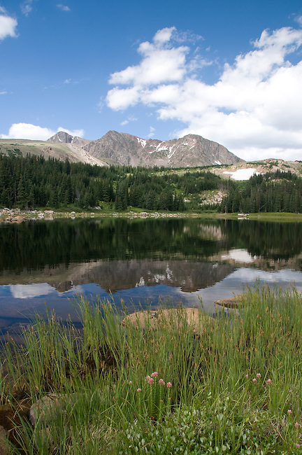 Rowe Mountain, Lost Lake, reflection, landscape, shore, shoreline, back country, nature, subalpine, forest, summer, August, morning, Rocky Mountain National Park, Colorado, USA