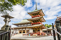 Narita Layover 2016