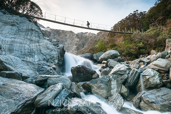Hiker on swingbridge over Tekano Creek near Douglas Hut in Copland Valley, Westland Tai Poutini National Park, UNESCO World Heritage Area, West Coast, New Zealand, NZ
