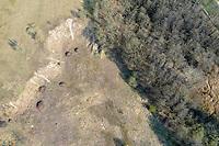 Sandgebiet, Trockenrasen, Trockengebiet, ehemalige Kiesgrube, Naturschutzgebiet Pantener Moorweiher und Umgebung, NSG, Kreis Herzogtum Lauenburg, Schleswig-Holstein, Deutschland