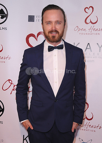 MALIBU, CA - MAY 10:  Aaron Paul at the 4th Annual Open Hearts Gala at a private residence on May 10, 2014 in Malibu, California. Credit: PGSK/MediaPunch