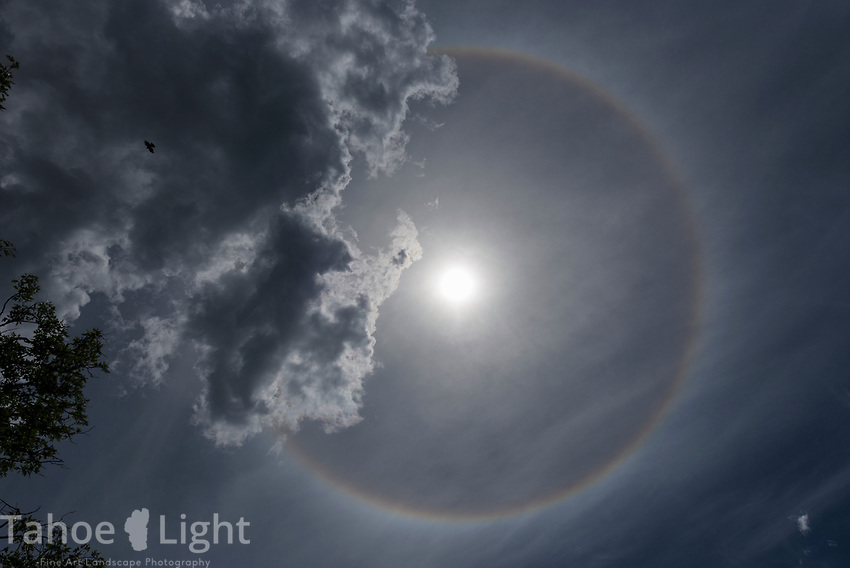 Full sunbow, a rainbow formed around the sun when it shines through high water vapor or mist.