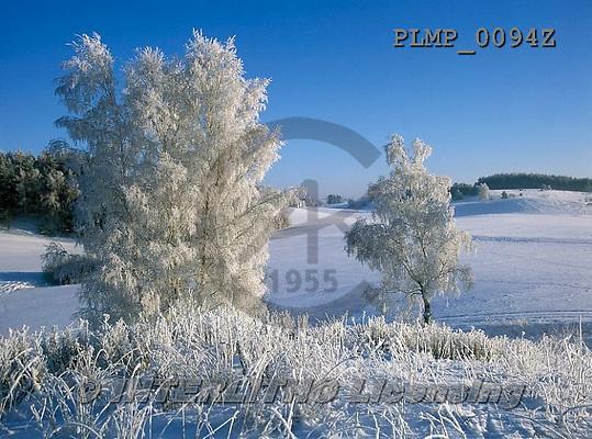 Marek, CHRISTMAS LANDSCAPES, WEIHNACHTEN WINTERLANDSCHAFTEN, NAVIDAD PAISAJES DE INVIERNO, photos+++++,PLMP0094Z,#xl#