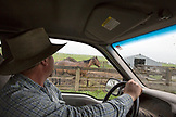 USA, Oregon, Enterprise, Cowboy Todd Nash returns to the Snyder Ranch after a long day of moving cattle in the rain, Northeast Oregon
