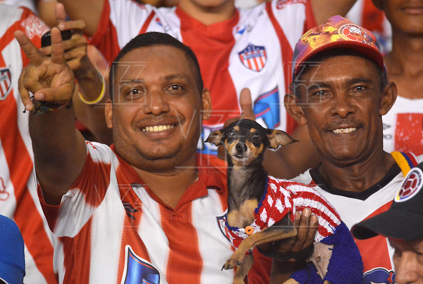 BARRANQUIILLA -COLOMBIA-13-12-2015: Hinchas de Atlético Junior celebran su paso de su equipo a la final de la Liga Aguila después del partido de vuelta entre Atletico Junior e Deportes Tolima por las semifinales de la Liga Aguila II 2015, jugado en el estadio Metropolitano Roberto Melendez de la ciudad de Barranquilla. / Fans of Atletico Junior celebrate the clasification of their team to the final of Aguila League after a match for the second leg between Atletico Junior and Deportes Tolima for the semifinals of the Liga Aguila II 2015 played at the Metroplitano Roberto Melendez stadium in Barranquilla city.  Photo: VizzorImage/Alfonso Cervantes/