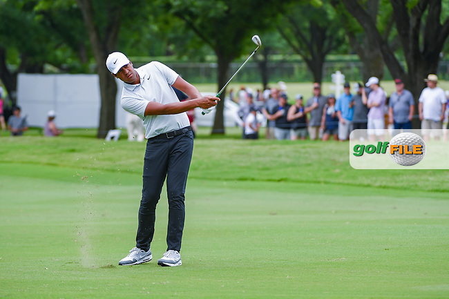 Tony Finau (USA) chips on to 2 during round 3 of the 2019 Charles Schwab Challenge, Colonial Country Club, Ft. Worth, Texas,  USA. 5/25/2019.<br /> Picture: Golffile   Ken Murray<br /> <br /> All photo usage must carry mandatory copyright credit (© Golffile   Ken Murray)