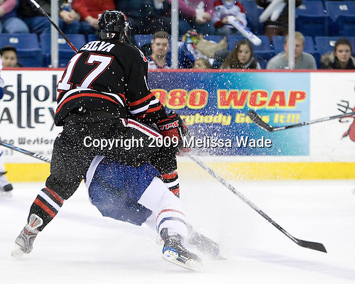 Steve Silva (Northeastern - 17), Nick Monroe (UMass-Lowell - 14) - The Northeastern University Huskies defeated the University of Massachusetts-Lowell Riverhawks 3-1 on Saturday, February 28, 2009, at the Paul E. Tsongas Arena in Lowell, Massachusetts.