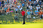 30 August 2009: Tiger Woods during the final round of The Barclays PGA Playoffs at Liberty National Golf Course in Jersey City, New Jersey.