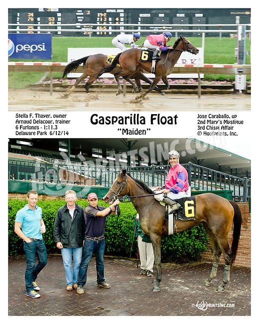 Gasparilla Float winning at Delaware Park racetrack on 6/12/14