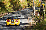 ford roush yellow convertible fall leaves,upstate ny
