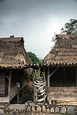 INDONESIA, Flores, Bena village, a home that is adorned with cow horns that were made as offerings when the home was built