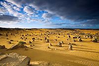 Morning light at the Pinnacles Desert in Nambung National Park.  Cervantes, Western Australia, AUSTRALIA.