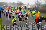 The start of the Kerry's Eye Tralee, Tralee International Marathon and Half Marathon on Saturday.