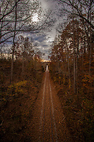 Straightened Path Ahead