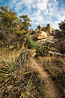 Dragoon Mountains Tombstone Arizona