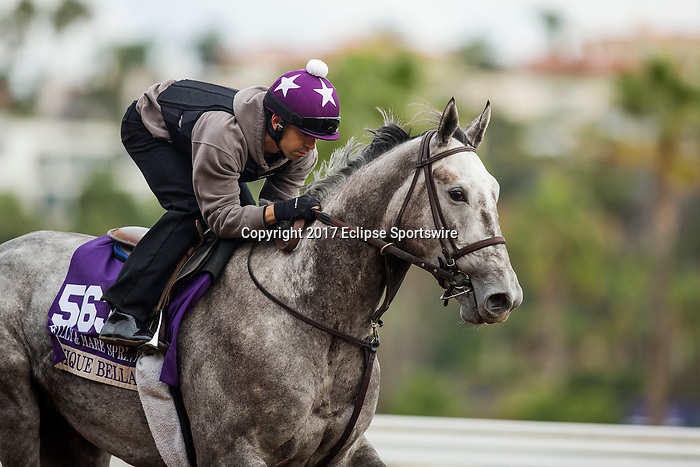 DEL MAR, CA - NOVEMBER 02:   Unique Bella, owned by Don Alberto Stable and trained by Jerry Hollendorfer, exercises in preparation for Breeders' Cup Filly & Mare Sprint at Del Mar Thoroughbred Club on November 02, 2017 in Del Mar, California. (Photo by Alex Evers/Eclipse Sportswire/Breeders Cup)
