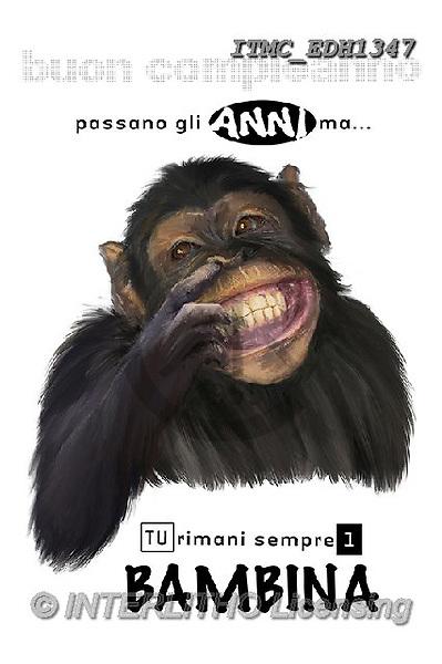 Marcello, ANIMALS, REALISTISCHE TIERE, ANIMALES REALISTICOS, photos+++++,ITMCEDH1347,#A#, EVERYDAY ,funny photos