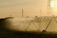 Sprinklers spraying water in field (Licence this image exclusively with Getty: http://www.gettyimages.com/detail/73013982 )