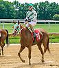 Rumblin Kyle winning at Delaware Park on 7/16/16