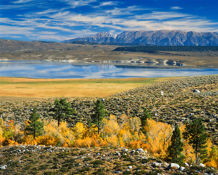 Crowley Lake is a reservoir on the upper Owens River in southern Mono County, California in the United States. It was created in 1941 by the Los Angeles Department of Water and Power (DWP) as storage for the Los Angeles Aqueduct and for flood control. Also known for its trout fishing: between 6,000 and 10,000 anglers hit the lake on opening day; largest brown trout taken from the lake weighed 27 pounds (12 kg). White Mountains in background. Inyo County, CA.