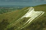 Westbury White Horse, Wiltshire England UK
