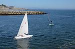 Sailing laser in Santa Cruz Harbor