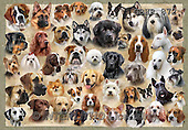 Howard, REALISTIC ANIMALS, REALISTISCHE TIERE, ANIMALES REALISTICOS, paintings+++++,GBHR872,#A#dogs,collage ,puzzles