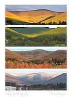 Moods of Mt. Greylock, Poster