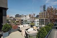 Roof Deck at 15 Renwick Street