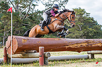 Alyssa Harrison rides Da Vinci Code during the Cross Country for Class 1B NZPCA 1.05m. Final-3rd. 2019 NZL-Hunua Pony Club 2DE. Proudly Sponsored by Golden Horse Feeds and Christophe Pallies. Sunday 3 February. Copyright Photo: Libby Law Photography