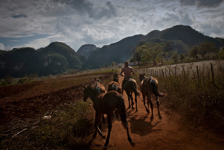 A man riding a horse in the countryside near Viñales.