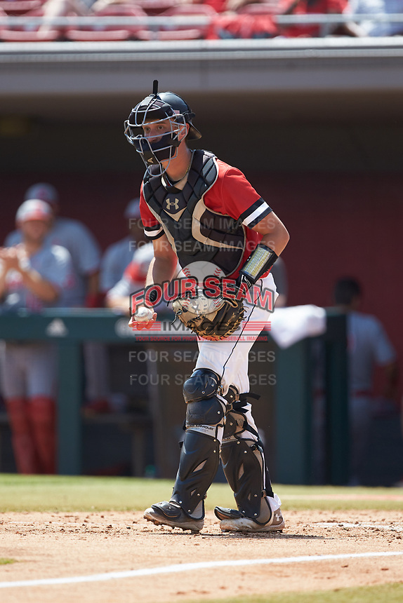 Northeastern Huskies catcher Michael Geaslen (13) on defense against the North Carolina State Wolfpack at Doak Field at Dail Park on June 2, 2018 in Raleigh, North Carolina. The Wolfpack defeated the Huskies 9-2. (Brian Westerholt/Four Seam Images)