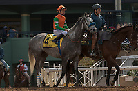 ARCADIA, CA FEBRUARY 10:  #4 Unique Bella, ridden by Mike Smith, in the post parade of the Santa Maria Stakes (Grade ll) on February 10, 2018 at Santa Anita Park in Arcadia, CA.(Photo by Casey Phillips/ Eclipse Sportswire/ Getty Images)