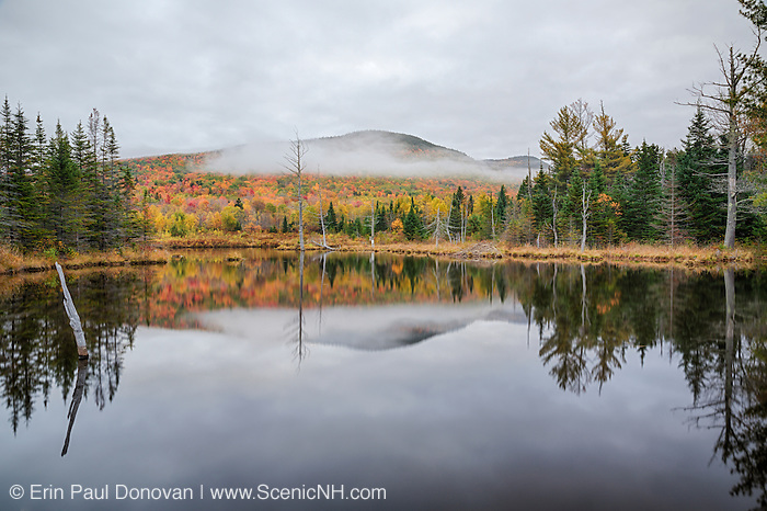 Wildlife Pond in Bethlehem, New Hampshire USA during the autumn months.
