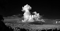 Infrared Landscape (Click on thumbnails below to purchase)