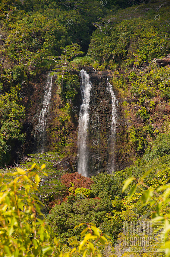 Opaeka'a Falls in the Wailua rainforest, Kauai.