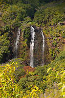 Opaeka'a Falls in the Wailua rainforest, Kauai.