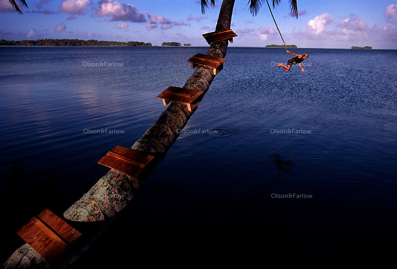 "The largest purchase to date for the Nature Conservancy is the Palmyra an atoll situated about 300 miles north of the equator.  The cook at the NC temporary camp uses a rope swing for recreation. Palmyra has five times as many coral species as the Florida Keys and three times as many as Hawaii.  It is home to the world's largest invertebrate, the rare coconut crab, and a population of red-footed booby birds second only to that of the Galapagos.  It is the last marine wilderness area left in the U.S. tropics and is home to the last remaining stands of Pisonia grandis beach forest in the world.  Palmyra was a US Navy supply base in World War II, the site of a proposed nuclear waste dump, an unsuccessful coconut plantation and of various development schemes.  Palmyra is most famous for the 1974 slaying  of a married couple which became the subject of the best-selling book ""And the Sea Will Tell,"" by Vincent Bugliosi."