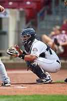 Cedar Rapids Kernels catcher Rainis Silva (18) during a game against the Dayton Dragons on July 24, 2016 at Perfect Game Field in Cedar Rapids, Iowa.  Cedar Rapids defeated Dayton 10-6.  (Mike Janes/Four Seam Images)
