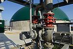TURKEY Bandirma, Edincik, 2.1 MW biogas plant of company Telko where chicken dung from surrounded chicken farms is fermented to gas which is used for generation of electric power, biogas plant was installed by german company Bioconstruct / TUERKEI Bandirma, Edincik, 2.1 MW Biogasanlage der Firma Telko, hier wird Huehnermist von umliegenden Huehnereier Legebatterien zu Biogas und Strom, die Anlage wurde von der deutschen Firma BioConstruct errichtet, Abfackeleinrichtung