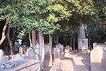 Venezia - Il Lido. L'antico cimitero ebraico.