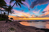 A vibrantly colorful sunset over a peaceful beach scene with resting honu (green sea turtles) in Puako, Hawai'i Island.