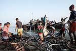 Rohingya working at the Cox's Bazar fishing port. The Rohingya is a Muslim ethnic community from Myanmar Arakan State. They represent one of the largest stateless populations on Earth, whether in Myanmar where an estimated one million people don't have the citizenship status or in other countries, particularly in Bangladesh, where possibly another 500,000 live as refugees or illegal migrants.