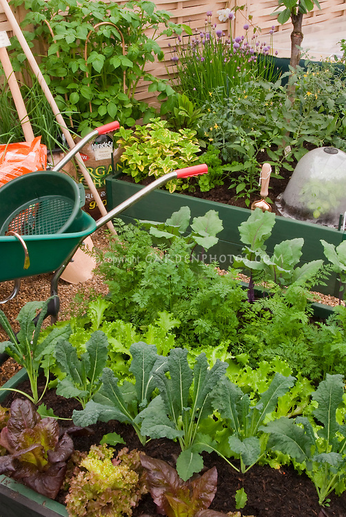 Vegetable Garden, Wheelbarrow, Plants