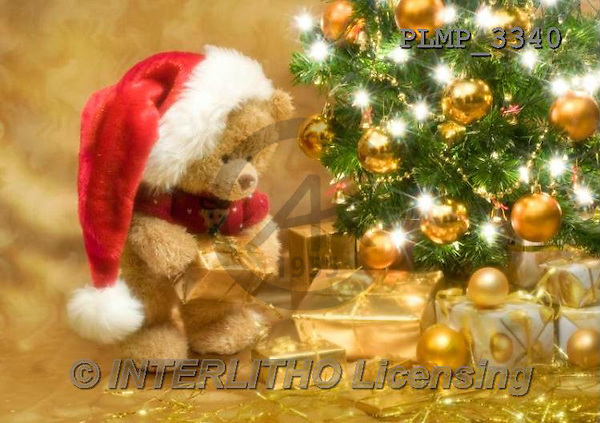Marek, CHRISTMAS ANIMALS, WEIHNACHTEN TIERE, NAVIDAD ANIMALES, teddies, photos+++++,PLMP3340,#Xa# under Christmas tree,