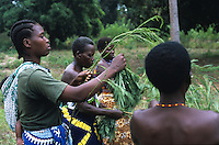 Farmer picking up leaves of Calliandra for fodder